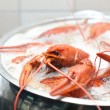 Crawfish boiling in a large pot - Stock Photo
