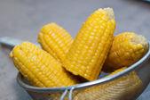 Boiled corn in pan — Stock Photo