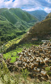 Traditional village in the Himalayas — Stock Photo