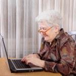 Active retirement — Stock Photo #10828101