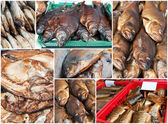 Collage of golden smoke-dried fish in market. — Stock Photo