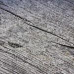 Closeup of Aged Wood — Stock Photo