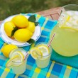 图库照片: Fresh Lemonade