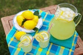 Fresh Lemonade — Stock Photo