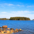 The island on the lake — Stock Photo