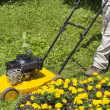 Man with yellow lawn mower — Stok fotoğraf