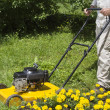 Man with yellow lawn mower — Stockfoto