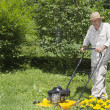 图库照片: Mid age man is mowing the grass