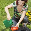 Women adding oil to lawn mover — Stock Photo #11090951