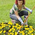 Lady doing some gardening — Stock Photo