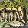 Fresh Mediterranean fishes on BBQ — Stock Photo