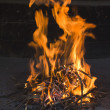 Fire flames in traditional fireside — Stock Photo #11618985
