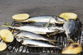 Fresh Mediterranean fishes before BBQ — Stock Photo
