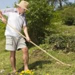 Mid age man raking the garden — Stock Photo