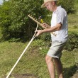 Stock Photo: Repairing wooden rake in the garden