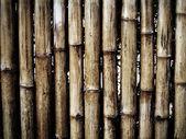 Grunge bamboe achtergrond — Stockfoto