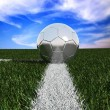 Silver soccer ball in the grass — Stock Photo