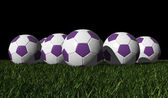 Purple soccer balls on a green grass — Stock Photo