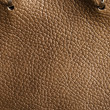 Stock Photo: Anil soft two tone brown leather