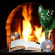 Lily-of-the-valley fireplace reflection — Stock Photo