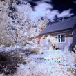 House in village infrared — Stock Photo #10752149
