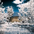 House in village infrared - Stock Photo