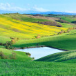Tuscany, Crete Senesi rural landscape, Italy. Lake green yellow — Stock Photo #11441820