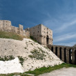 Magnificent Aleppo citadel in Syria — Stock Photo