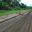 Stock Photo: Haulage road in outback of PapuNew Guinea