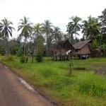 Village in Papua New Guinea — Stock Photo