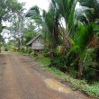 Gravel road in village Papua New Guinea — Stock Photo