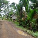 Gravel road in village Papua New Guinea — Stock Photo #11565358
