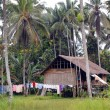 Stock Photo: House in village PapuNew Guinea