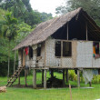 House in village Papua New Guinea — Stock Photo
