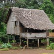 House in village PapuNew Guinea — Stock Photo #11565376