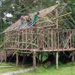 Stock Photo: Men building house PapuNew Guinea