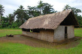 Village church in Papua New Guinea — Stock Photo
