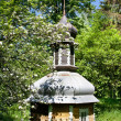 Church dome in forest — Stock Photo