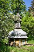 フォレスト内の教会のドーム — ストック写真