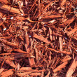 Red sawdust pattern — Stock Photo #11866709