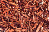 Red sawdust pattern — Stock Photo