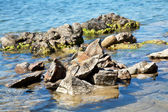 Stones in deep blue sea — Stock Photo