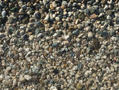 Sea pebble — Stock Photo
