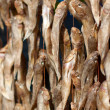 Постер, плакат: Stockfish on market