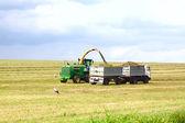 Truck taking the grain — Stock Photo