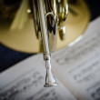 Stock Photo: Mouthpiece of French Horn