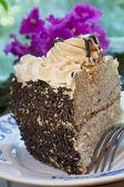 Sünger kek — Stok fotoğraf