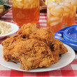 Fried chicken picnic lunch — Stock Photo