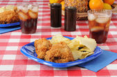 Picnic lunch with fried chichen — Stock Photo