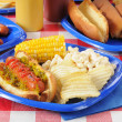 Hot dog with relish on a summer cookout — Stock Photo